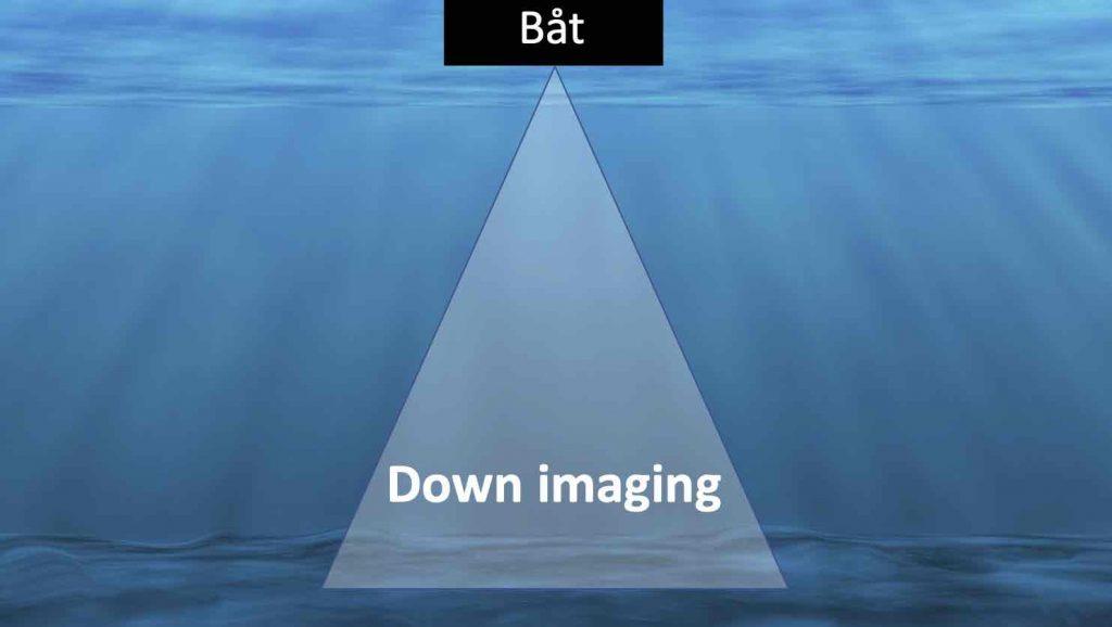 Avsökningsområdet för down imaging, sett bakifrån båten
